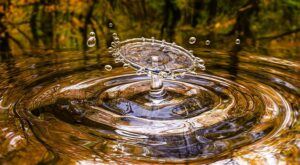 Uitgelicht: iShares Global Water UCITS ETF